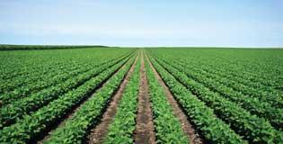PMAT_crop-protection