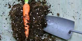 BIOAG_soil-additives1