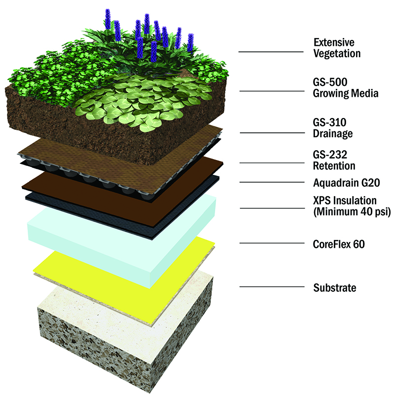 coreflex-extensive-green-roof-assembly-with-insulation