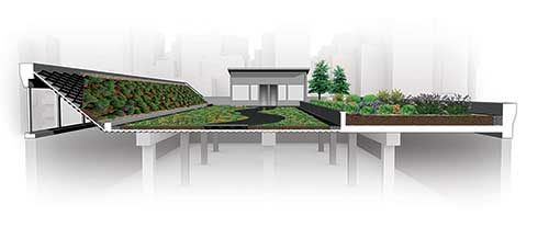 cetco-green-roof