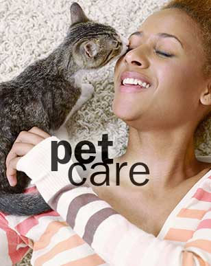 PetCare-Over
